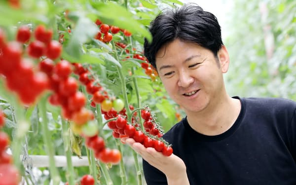 トマト栽培はグループ全体で300人を超す雇用を生む