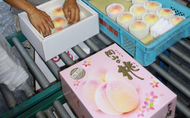 台湾向けの箱には「岡山の桃」の文字が躍る(7月15日、岡山県総社市)