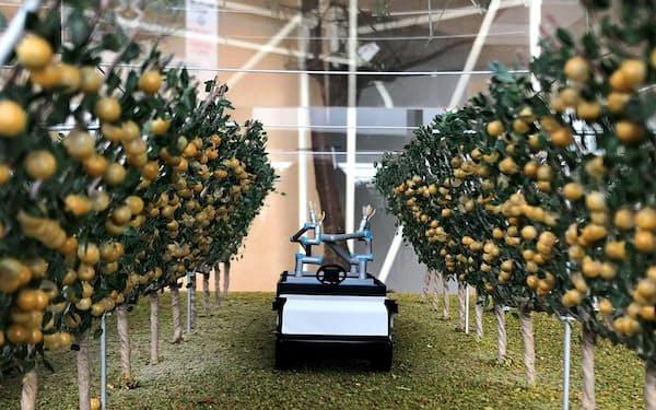 神奈川県農業技術センターにあるナシの収穫ロボットの模型(平塚市)