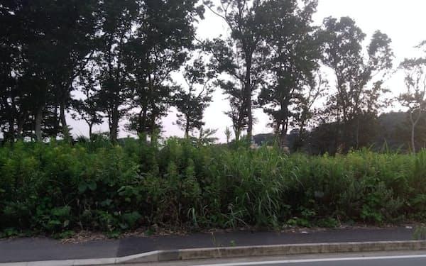 所有者がわからず管理の行き届かない土地は全国にある(千葉県内にある自治会の集会所建設予定地)