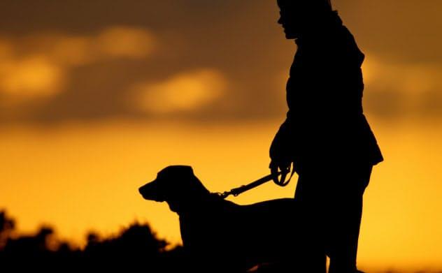ペットを人間同様に扱う傾向が巨大なペット市場を生んでいる=ロイター