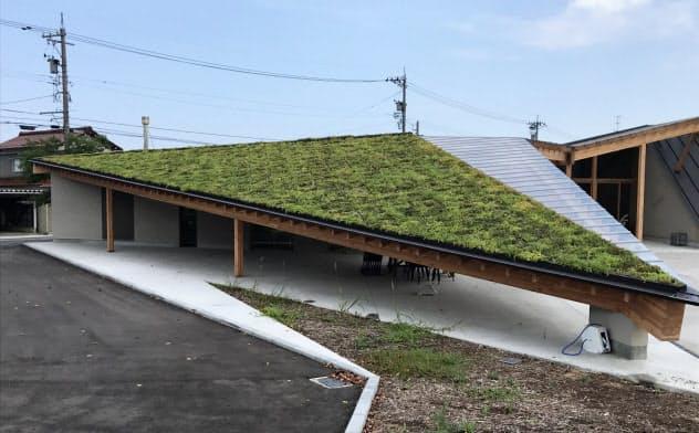 屋上緑化を施した軒下は周囲に比べて快適な空間に(石川県小松市の九谷セラミック・ラボラトリー)