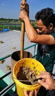 エビの養殖で発生する廃棄物から発生するガスを利用する(ベトナム南部)