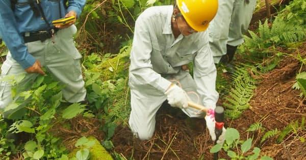 土地所有者の立ち会いで境界にくいを打つ森林組合の職員(富山県魚津市)