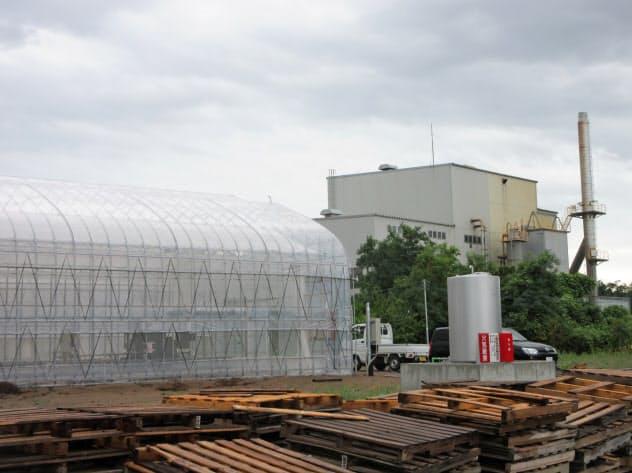 焼却炉(写真奥)から出る排熱をバナナの栽培に再利用する