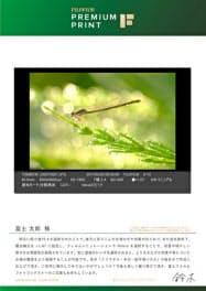 富士フイルムが注文受付を開始した「講評サービス」のイメージ画像