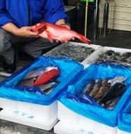 王滝は沼津直送の鮮魚をすし店などで提供する