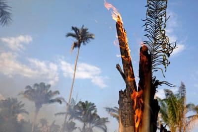 アマゾンでは火災発生ペースが急増している(20日、ブラジル北部アマゾナス州)=ロイター