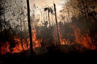 アマゾン熱帯雨林で広がる火災(23日、ブラジル北西部)=ロイター