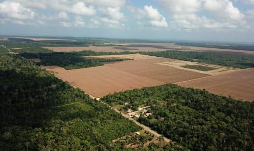 熱帯雨林が切り開かれ、農地となっている(ブラジル北部パラ州)