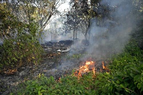 野焼きが森林火災の原因とみられている(ブラジル北部パラ州)