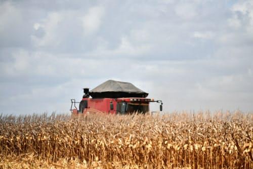 穀物生産や畜産業はブラジル北部にとって重要な収入源となっている(ブラジル北部パラ州)