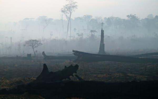 火災が起きているアマゾンを巡り欧米は森林保護を訴える=ロイター