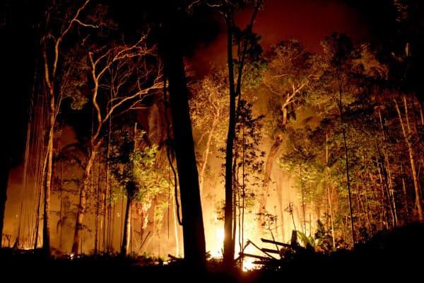 アマゾンの森林火災は国際的な関心事となっている(ブラジル北部ポルトベーリョ)=ロイター