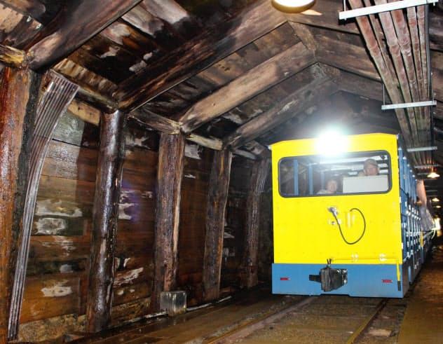 トロッコ列車に乗り、坑内を探索(栃木県日光市)