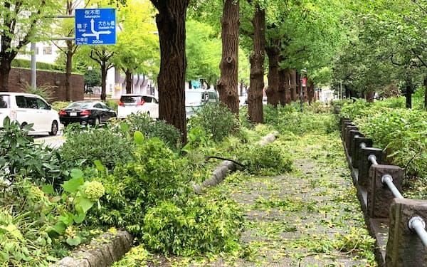 観光名所の山下公園では、折れた木の枝などが散乱した(横浜市)