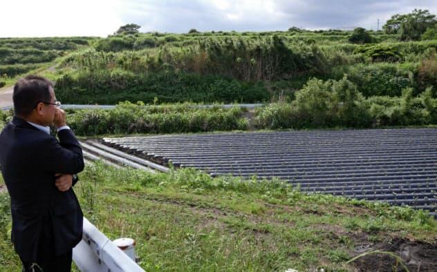 畑の奥には草が生い茂る持ち主のわからない土地が広がる(鹿児島県南九州市)
