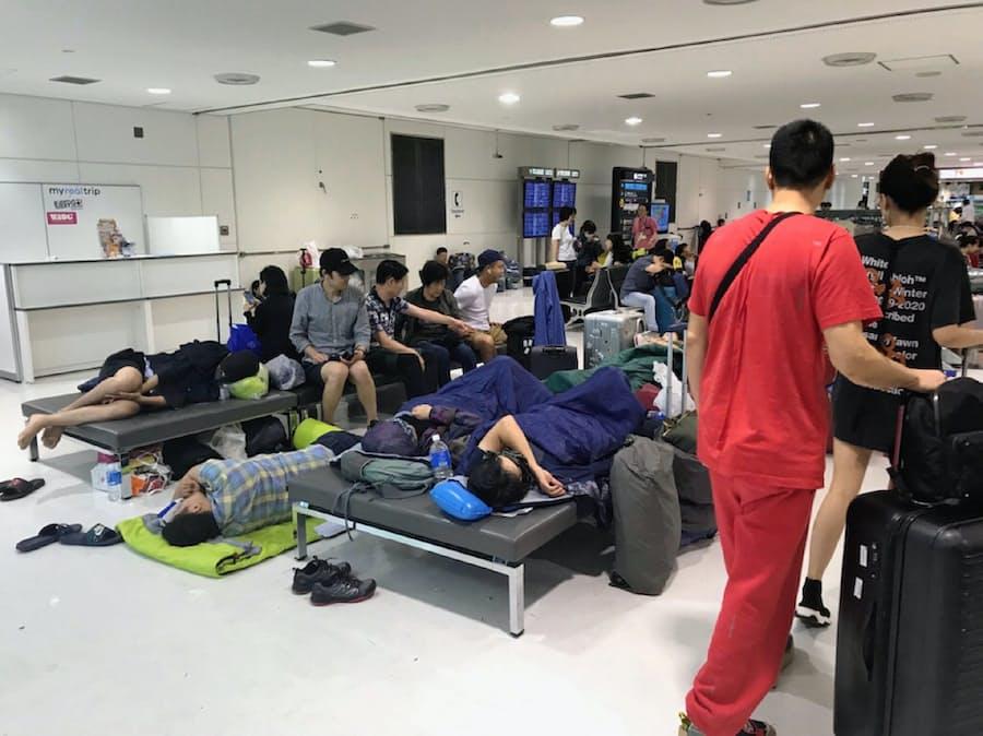 成田 空港 段ボール ベッド