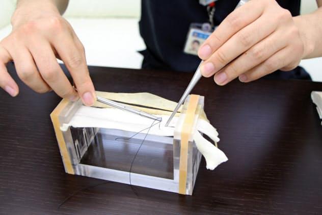 かんぴょうをピンと張り、手術用の針と糸で縫合する