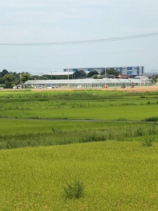 先行区域では進出企業の農業用ハウス建設が始まっている(埼玉県羽生市)