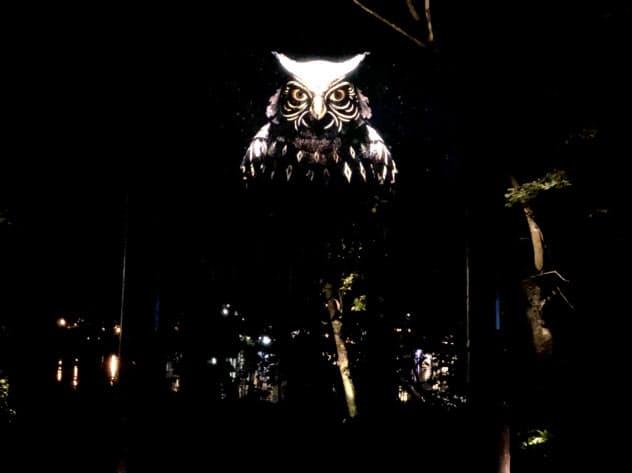 アイヌ神話をデジタルアート技術で再現する「カムイルミナ」