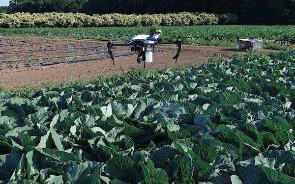 人工知能(AI)やドローンを使って農薬の散布量を最低限に抑える技術を開発