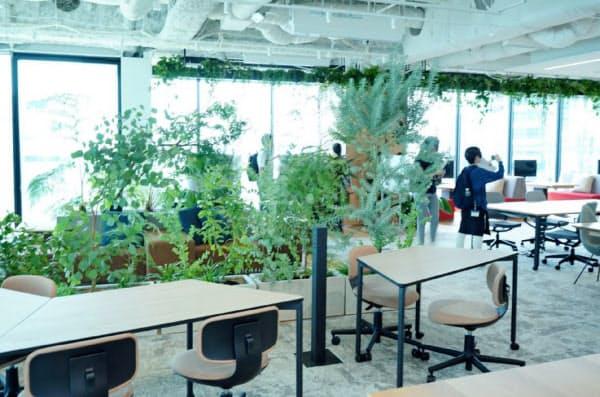新本社オフィスは多くの植物を配置して、社員がリラックスして働ける環境を整えている