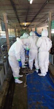 県は畜産試験場で防疫措置を実施した(長野県提供)