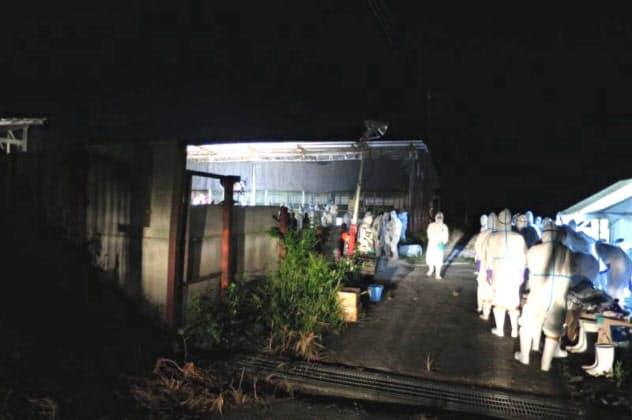 養豚場では殺処分や消毒などに取り組んだ(埼玉県秩父市)