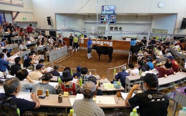 鳥取中央家畜市場で5日に行われた競りには国内各地から参加者が集まった。
