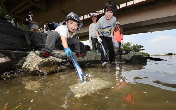 川の清掃活動でプラごみを拾う児童(8月、東京都足立区)=樋口慧撮影