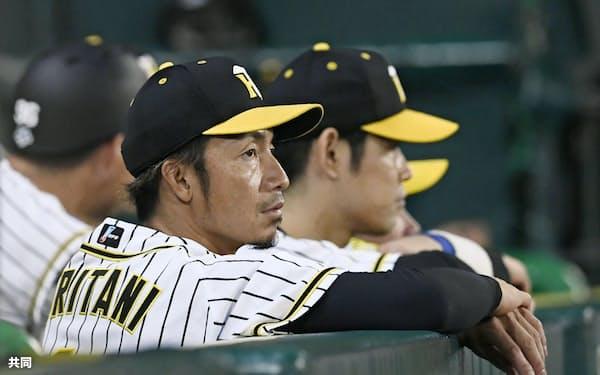 阪神・鳥谷は8月末、球団から来季の戦力構想に入っていないことを告げられた=共同