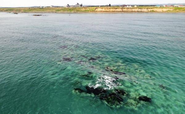 北海道猿払村の沖約500メートルにあった「エサンベ鼻北小島」付近(5月)=共同