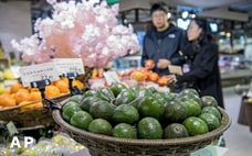 「草食」は中国の高カロリー社会を救うか