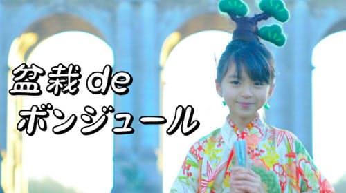 高松市は、盆栽PR動画の配信を始めた