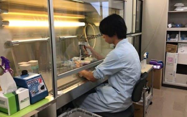 川崎医科大学は肺がん患者の血液を調べ、がん免疫薬の効果を予測する技術を開発した(川崎医大提供)。