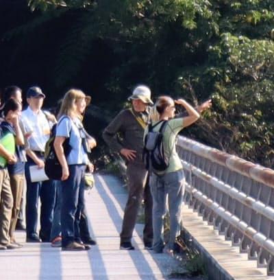 国際自然保護連合(IUCN)の専門家は「やんばる」の自然環境について説明を受けた(7日、沖縄島北部)