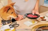 4種類の犬用の焼き肉をおかわり自由にする