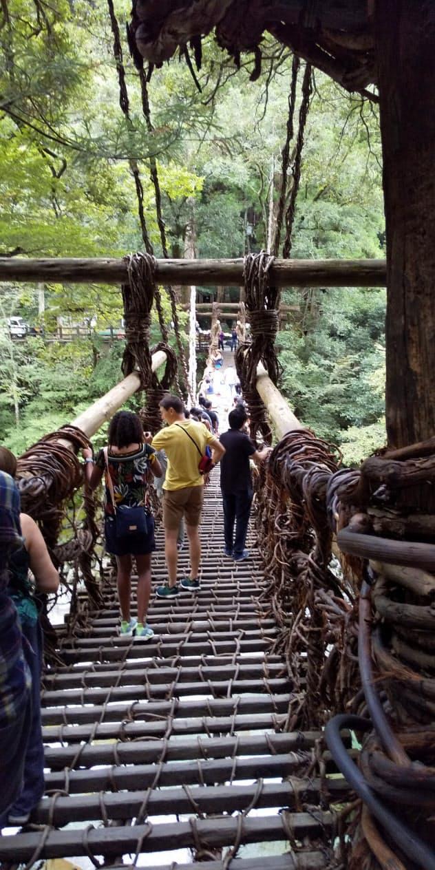 ゆらゆら揺れる祖谷のかずら橋は外国人観光客にも人気(徳島県三好市)