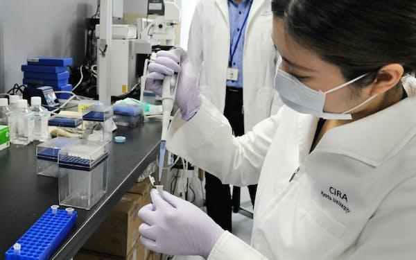 国際的な指針の策定でiPS細胞の応用研究も活発に(京大で)