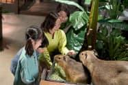 野生動物の企画は家族連れなどでにぎわう(オービィ横浜)