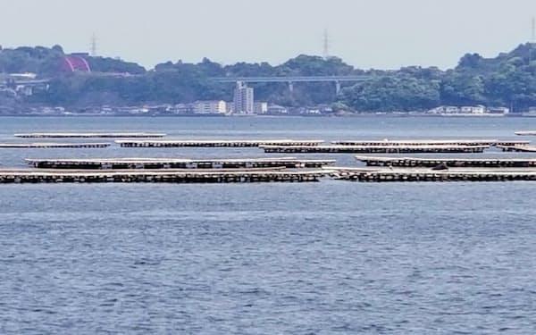 瀬戸内海は環境保全の取り組みで「きれいな海」を取り戻してきたが…(広島湾)