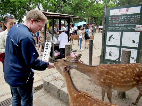 観光客の受け入れ環境の整備などに充てる方針だ(奈良公園)