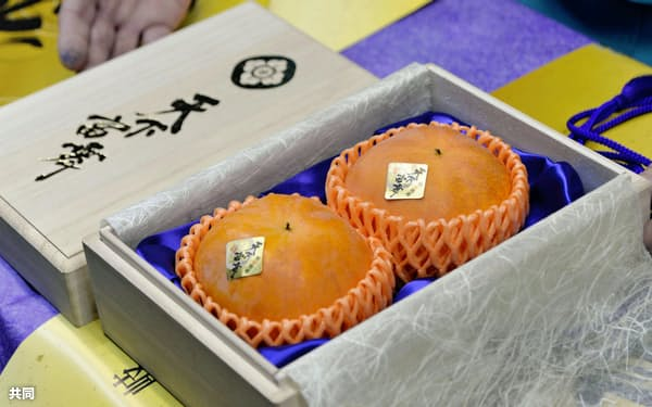 過去最高の2個70万円で競り落とされた岐阜県産の高級柿「天下富舞」(25日午前、愛知県豊山町)=共同