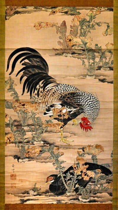画家伊藤若冲の最初期の作品とみられる「蕪に双鶏図」(5日、京都市)=共同