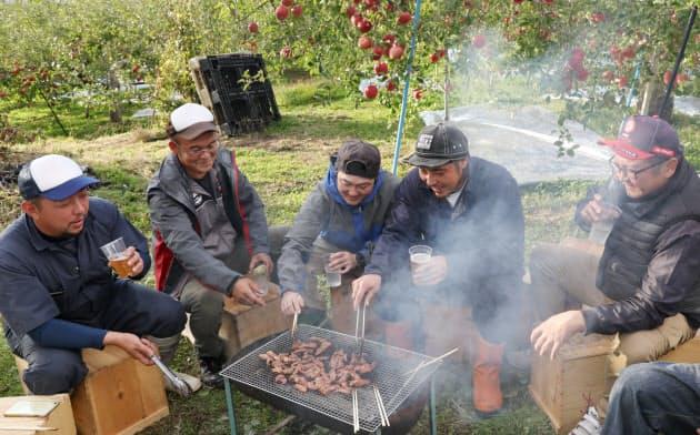 リンゴの木の下でサガリを焼く農家の人たち(青森県平川市)=山田 麻那美撮影