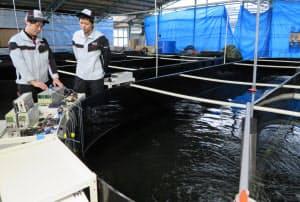 エビ養殖場で水質センシング計測器の実証実験をしている(岐阜県瑞浪市)