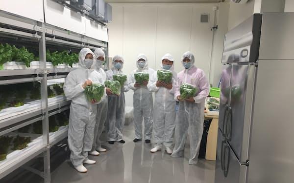 気候条件の悪い地域を中心に植物工場の受注活動を強化する(UAEの植物工場)
