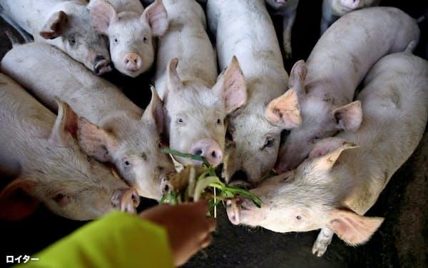 中国では豚肉価格が高騰している=ロイター