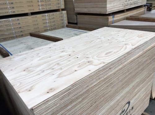 国産針葉樹合板の生産量は伸びている